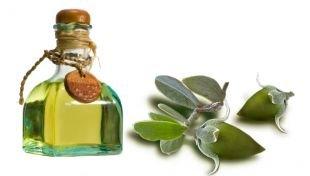 Масло жожоба для волос - кладезь витаминов, минералов и аминокислот